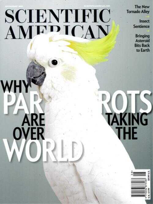 Cover: Scientific American magazine
