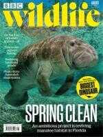 Magazine: BBC Wildlife