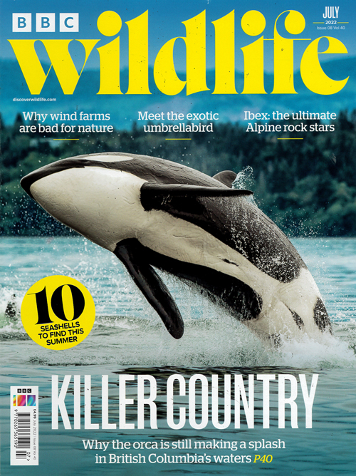 Cover: BBC Wildlife magazine