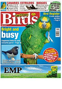 Cover: Cage & Aviary Birds magazine