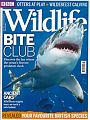 Magazine: BBC Wildlife